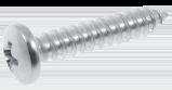 Phillips screw