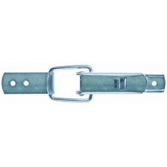 Standard Toggle 2/55/60 F AISI 304 Locking Spring